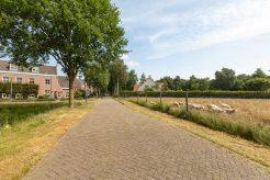 Afbeelding van: Helmond – Schutsboom 8 – Foto 51