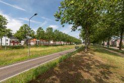 Afbeelding van: Helmond – Schutsboom 8 – Foto 54